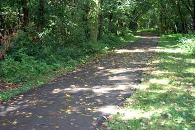 Hamilton Conservation Trails